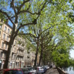 Lyon, a encantadora cidade da França