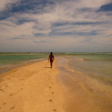 Piscinas naturais do Patacho, em Alagoas: como conhecer?