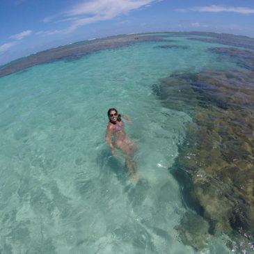 Maragogi, em Alagoas: como e quando ir?